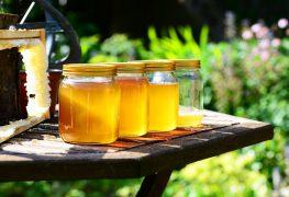 trị ho từ mật ong